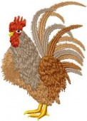 CSS364 - Country Chickens Set 2