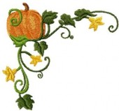 CSS121 - Curly Pumkin Borders & Cnrs 9