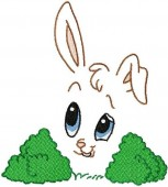 CSS353 - Bunny Expression 03